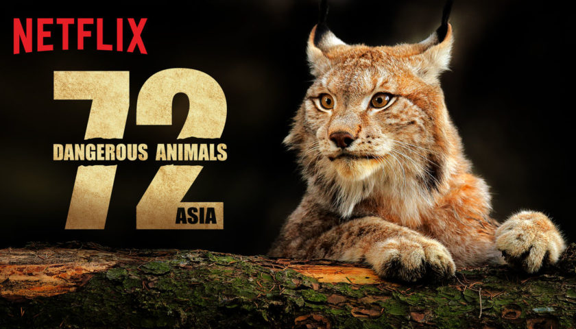 72 Dangerous Animals Asia Review 2018 Tv Show