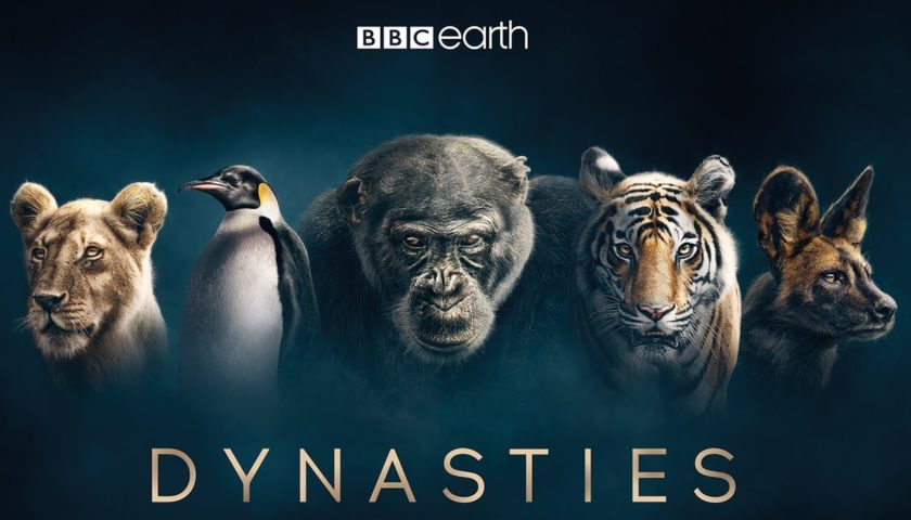 Dynasties Review 2018 Tv Show