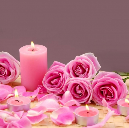 Gift Pink Flowers