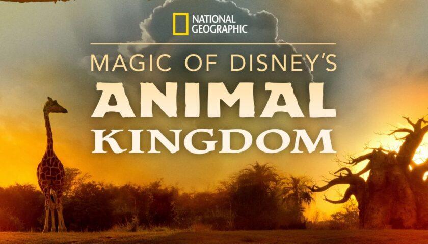 Magic of Disney's Animal Kingdom Review 2020 Tv Show