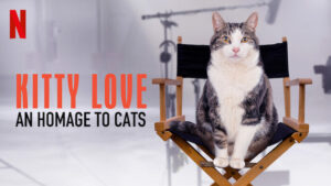 Kitty Love An Homage to Cats review